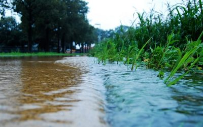 Stormwater Quality In L.A. – Breaking Through Fear Itself
